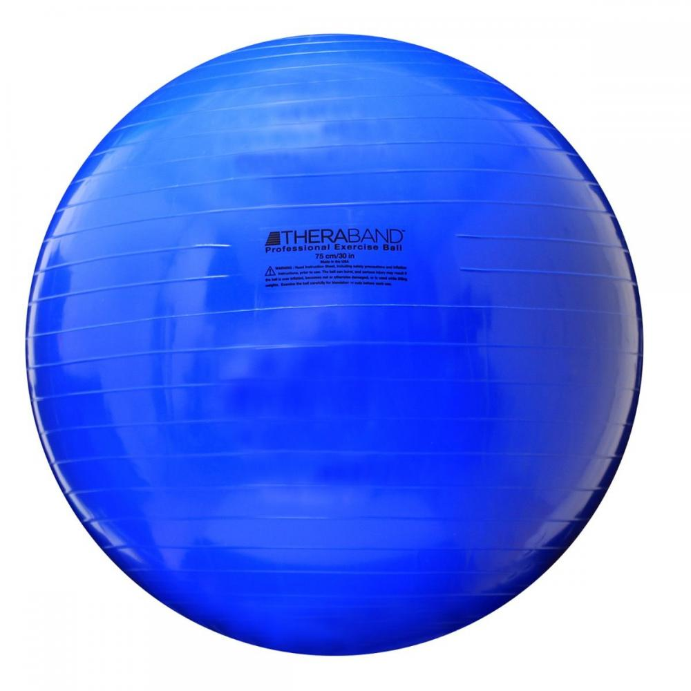 TheraBand Standard Exercise Balls 30 in. Blue