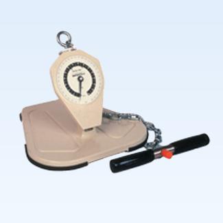 Baseline back, leg, chest dynamometer, adolescent, 330lb